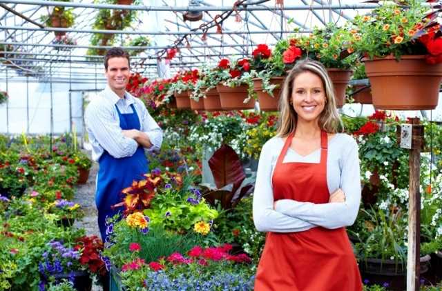 get a small business loan
