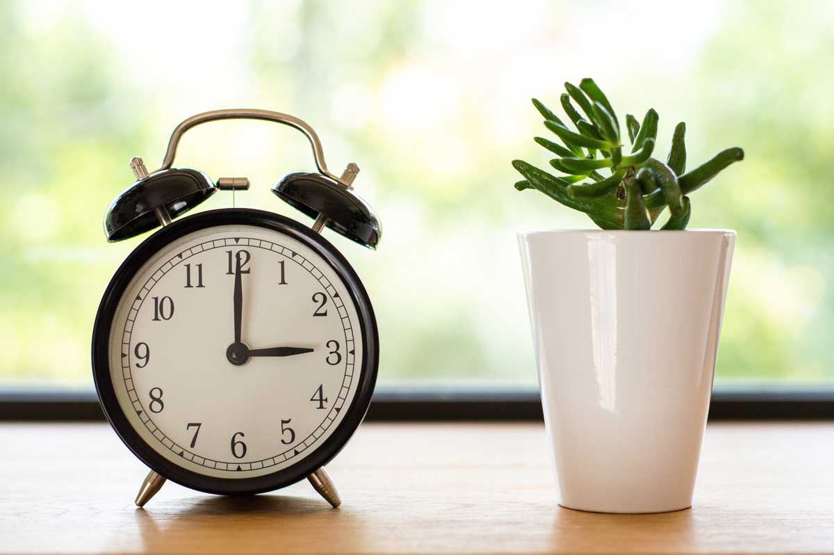 How Long Does it Take to Get a Small Business Loan?